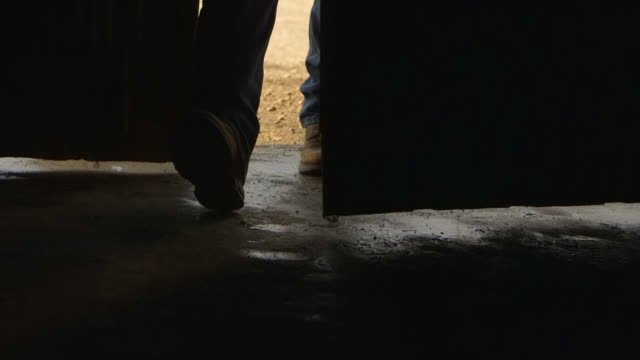 stockvideo's en b-roll-footage met legs of caucasian father and son opening barn door - boerderijschuur