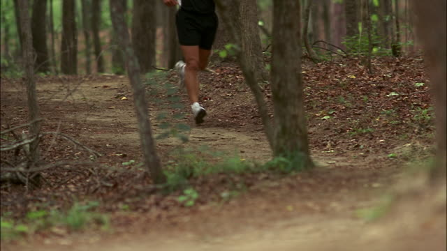 Legs of man running on forest trail towards camera / Red Top Mountain State Park, Georgia