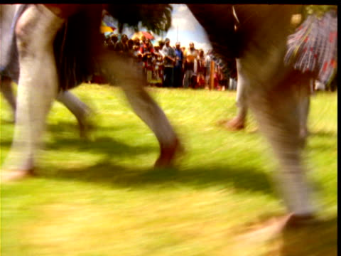 legs of papuan villagers as they stomp past at mount hagen show, papua new guinea - traditional ceremony stock videos and b-roll footage