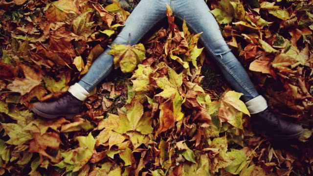 legs on dry leaves - lying on back stock videos and b-roll footage