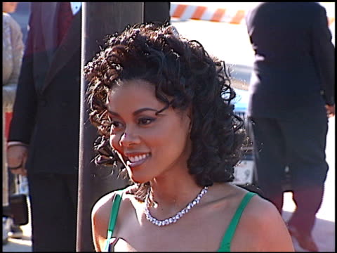Lela Rochon at the NAACP Image Awards at Pasadena Civic Auditorium in Pasadena California on April 6 1996
