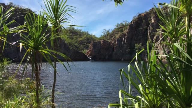 leliyn edith falls in nitmiluk national park northern territory australia - pond stock videos & royalty-free footage