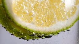 lemon slice in sparkling water