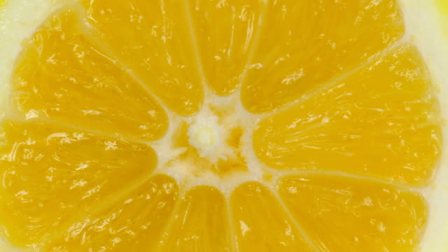lemon slice on white - lemon stock videos & royalty-free footage