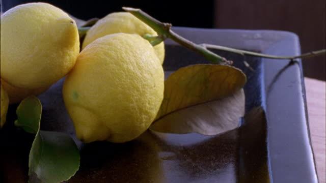vídeos de stock, filmes e b-roll de cu, lemons on leafy branch - grupo médio de objetos