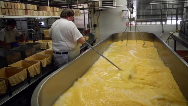 lenny zimmel stirs a vat of colby cheese and prepares cheese molds at widmer's cheese cellars on june 27, 2016 in theresa, wisconsin. widmer's is an... - チーズ点の映像素材/bロール