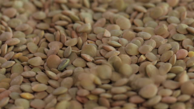 lentils - raw food stock videos & royalty-free footage