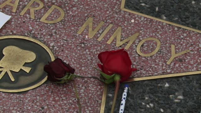 leonard nimoy who starred as spock on the hit franchise star trek died on february 27 2015 fans and media gathered to pay their respect at his star... - franchising stock-videos und b-roll-filmmaterial