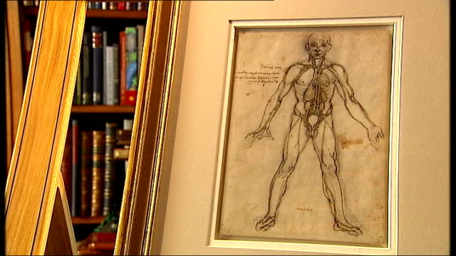 leonardo da vinci's anatomical drawings exhibition london buckingham palace the queen's gallery drawing on display for 'leonardo da vinci anatomist'... - 展覧会点の映像素材/bロール