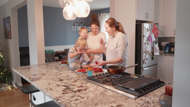lesbian couple enjoying their breakfast with their children at the kitchen counter - routine stock videos & royalty-free footage