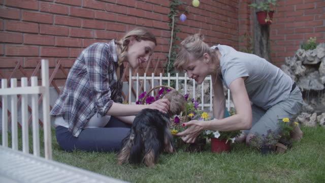 4K: Lesbian Couple Gardening In A Backyard.