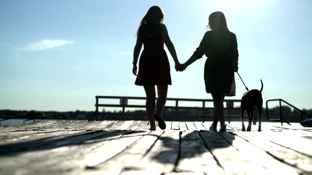 vídeos de stock, filmes e b-roll de lésbica amor - homossexualidade