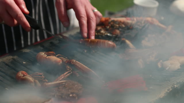 let's get grilling! - seafood stock videos & royalty-free footage