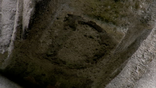 vídeos y material grabado en eventos de stock de a letter d is inscribed in a slab of stone at rushton triangular lodge in northamptonshire, england. available in hd. - northamptonshire