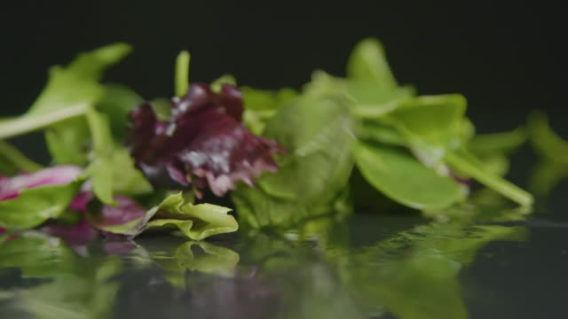 lettuce leaves falling onto table - lettuce stock videos & royalty-free footage