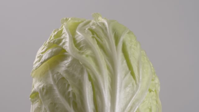 lettuce rotate on white background. - lettuce stock videos & royalty-free footage