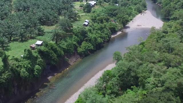 Leuser National Park Sumatera.