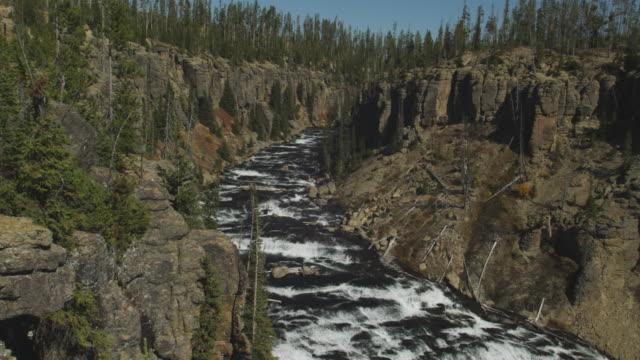 vídeos y material grabado en eventos de stock de lewis river cuts through yellowstone park. - río snake