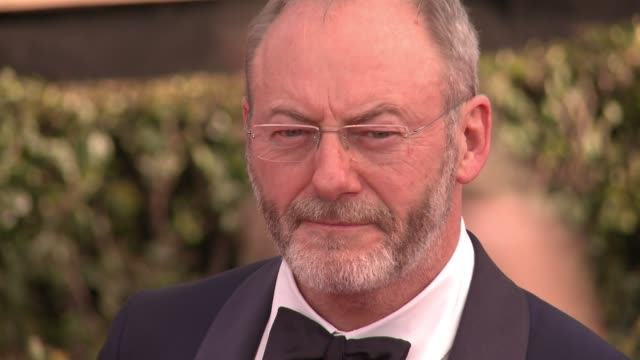 liam cunningham at 23rd annual screen actors guild awards arrivals at the shrine expo hall on january 29 2017 in los angeles california - liam cunningham stock videos & royalty-free footage