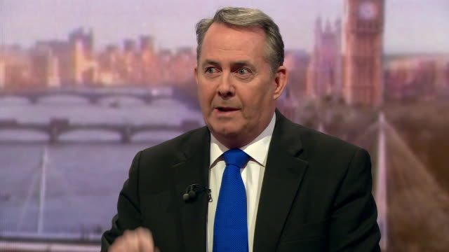 liam fox saying 80% of us in the house of commons were elected on a manifesto that we would honour the results of the referendum and that we cannot... - 2016 european union referendum stock videos & royalty-free footage