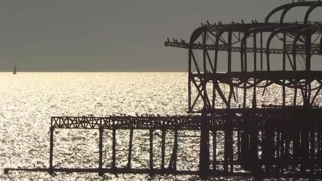 vince cable claims antibrexit message is starting to get through england east sussex brighton ext silhouette of west pier seagull on lamppost and... - east sussex stock videos & royalty-free footage