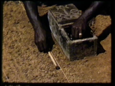 vídeos y material grabado en eventos de stock de liberian farm workers planting rubber tree seeds along ground vs farmers grafting buds from mature tree onto tree seedlings hands cutting thin bark... - liberia