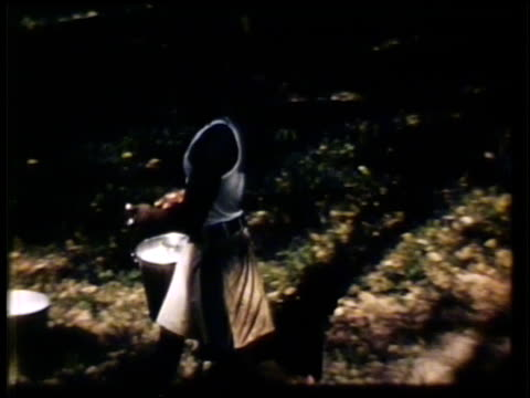 liberian workers w/ pails collecting latex from natural rubber trees pouring sap from cup into bucket vs workers carrying buckets w/ stick on... - rubber tree stock videos & royalty-free footage