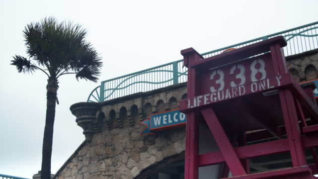 lifeguard tower and palm tree in daytona beach, florida on stormy day - cabina del guardaspiaggia video stock e b–roll