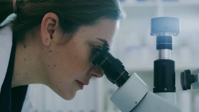 vídeos y material grabado en eventos de stock de los mayores misterios de la vida se resuelven bajo un microscopio - patólogo