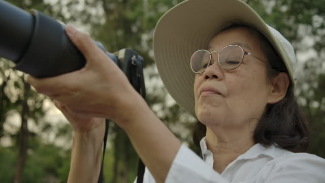 lifestyle elderly women to take pictures. - grass stock videos & royalty-free footage