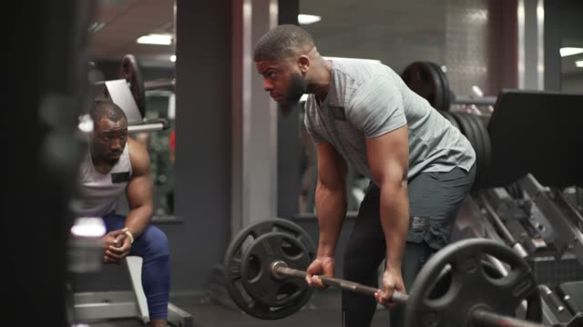 lifting free weights in the gym. - menschlicher muskel stock-videos und b-roll-filmmaterial