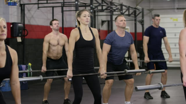 lifting weights as a team - fatcamera stock videos and b-roll footage