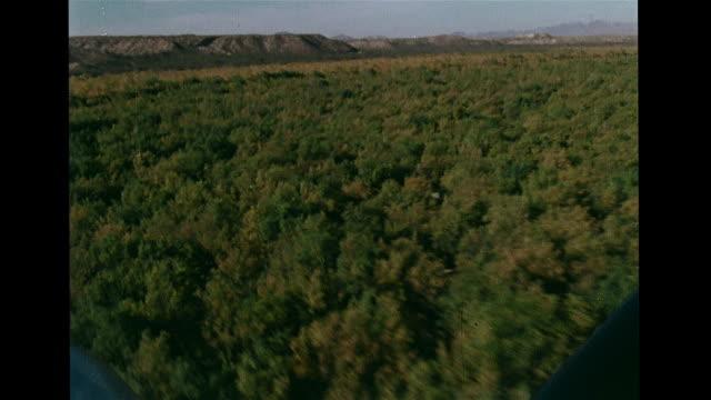 vídeos de stock, filmes e b-roll de ws light aircraft taking off arid landscape aerial flying above forest of saltcedar trees plane shadow cu moisture meter on plane wing cu data... - papel quadriculado