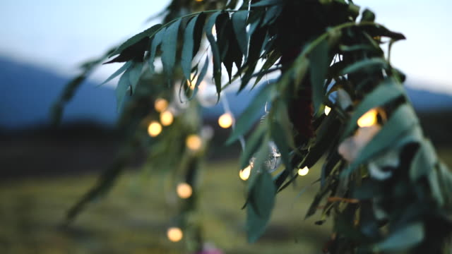 light bulb decor at outdoor party - ornate stock videos & royalty-free footage
