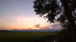 Light from sunset among golden rice field