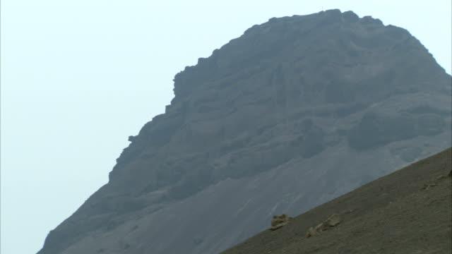 stockvideo's en b-roll-footage met a light mist hangs over a rugged mountain in ethiopia. available in hd. - hoorn van afrika