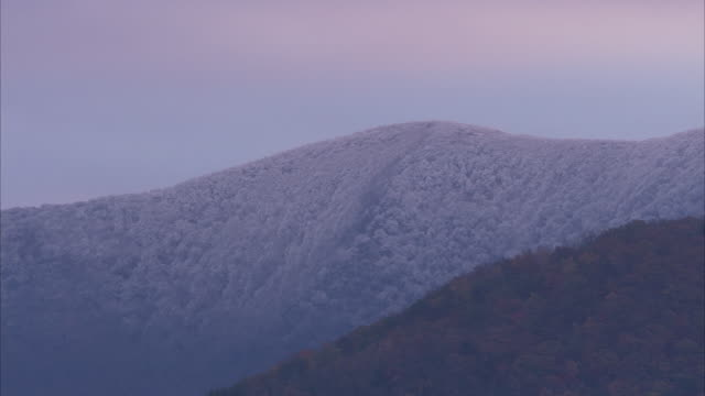 light snow dusts slopes in the appalachian mountains. - appalachia stock videos & royalty-free footage