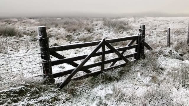 light snow in sheriffmuir, near dunblane, as wintry showers are forecast for many parts of scotland. - dunblane stock videos & royalty-free footage