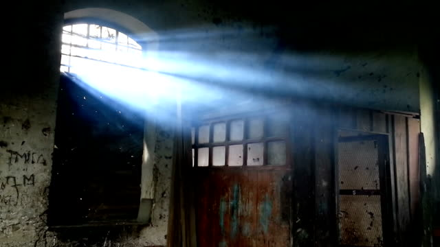 light through window in the morning - imperfection stock videos & royalty-free footage