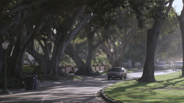 PAN Light traffic of cars driving down a tree-lined residential street