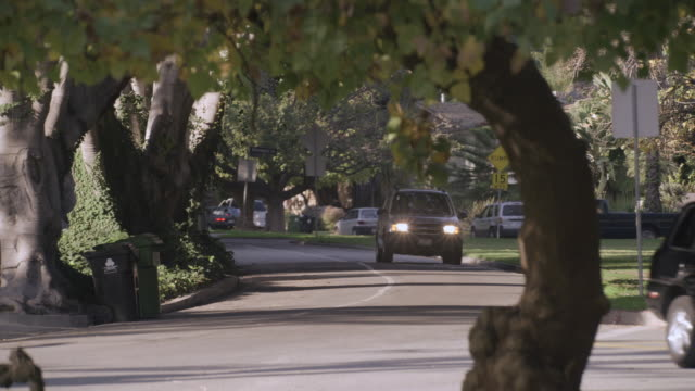 WS Light traffic of cars driving down tree-lined, residential streets