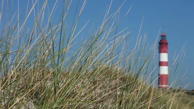 lighthouse in the dunes - gras stock videos and b-roll footage