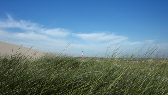 lighthouse near the beach - gras stock videos and b-roll footage