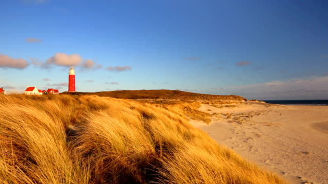 lighthouse on texel island in the netherlands in morning light - north sea stock videos & royalty-free footage