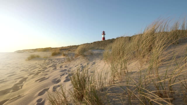 lighthouse on the dunes (sunrise) - gras stock-videos und b-roll-filmmaterial