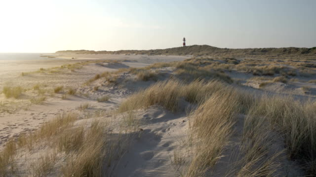 lighthouse on the dunes (sunrise) - nordfriesische inseln stock-videos und b-roll-filmmaterial