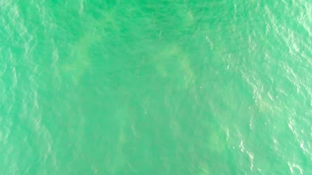 vídeos de stock e filmes b-roll de lighthouse - transparente