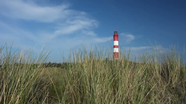 lighthouse with reed