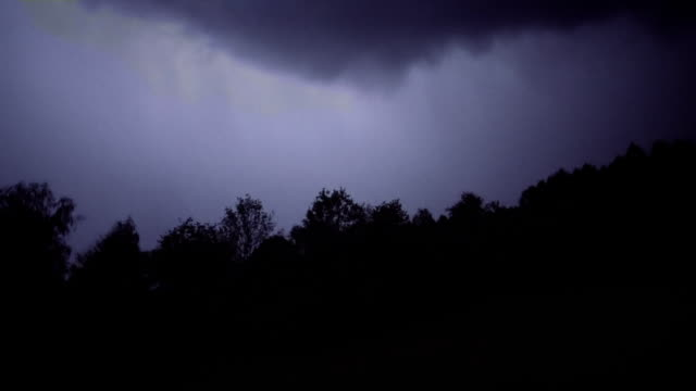 Lightning above the forest