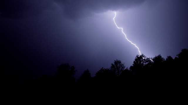 lightning above the forest - temporale video stock e b–roll